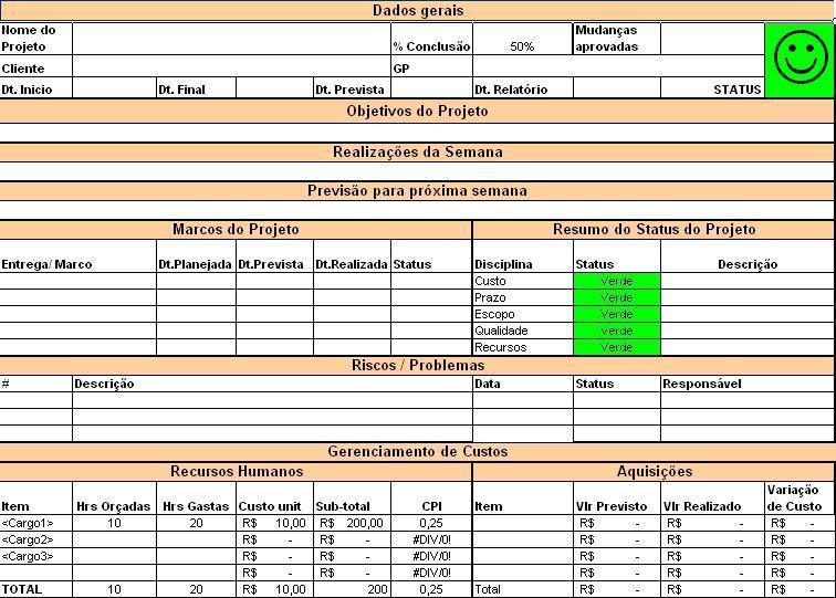 Modelo De Relatorio De Status Para Projetos Modelo  Pleto